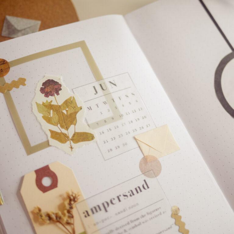 Elegant Bullet Journal Setup - Collage Cover Page & Dutch Door